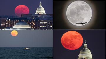 Wyjątkowe zdjęcia podczas wyjątkowej pełni. Zobacz, jak uwieczniono Superksiężyc [FOTOGALERIA]
